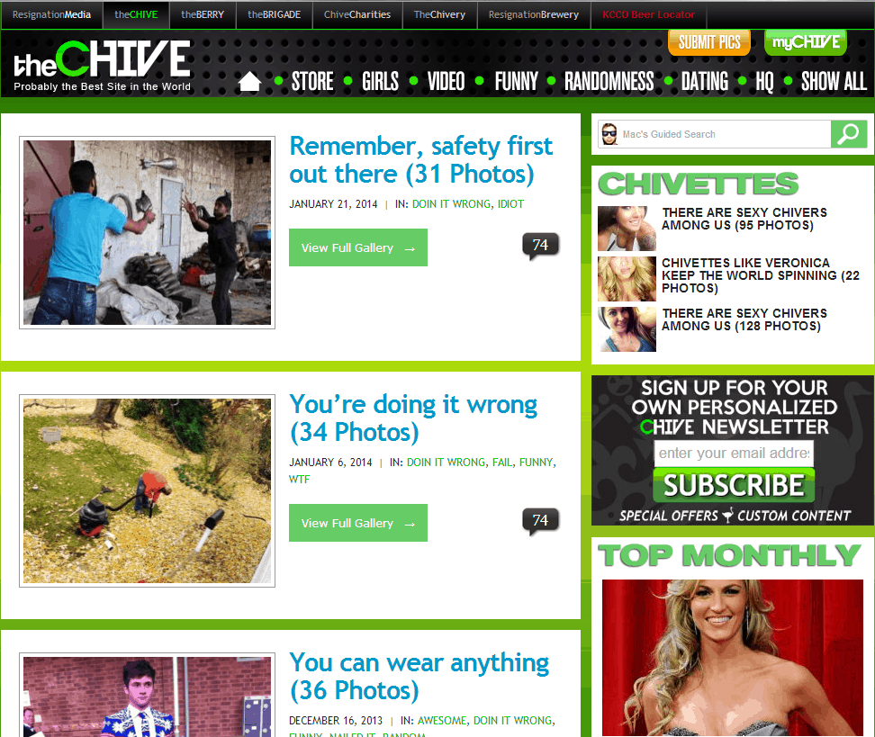 theCHIVE Website